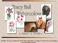 Tracy Hall Watercolours Art gallery screenshot